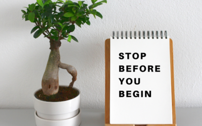 Stop Before You Begin