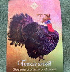 3 ways to focus on the light brought to you by the turkey spirit